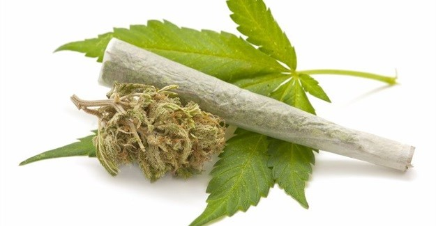 Stoned staff? What are employers' rights regarding weed in the workplace?
