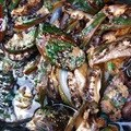 Abalone poacher sentenced to 20 years