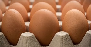 Call for Famous Brands to commit to cage-free eggs
