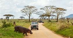 Tanzania tour operators demand new tourism policy