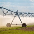 Stats SA conducts a nationwide census on commercial agriculture
