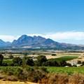 Paarl, Wellington wine tourism celebrates International Pinotage Day