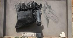 Meet the Maker: Marius Bezuidenhout of Black Horse