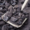 Court drama as state tries to force through coal mining plan