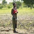 FAO director-general stresses importance of job creation in rural areas