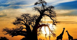 NW calls for closer tourism ties with Botswana