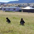 Equal Education calls on Ramaphosa to get involved in fixing schools