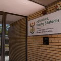 Fisheries department rots from the top