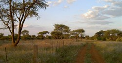 Namibian farmland by Sigismund von Dobschütz, CC BY-SA 3.0,