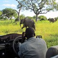 Why we need to work with local communities in tackling the illegal wildlife economy