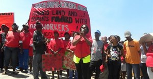 Farm workers demand dividends from black empowerment scheme