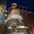 South African Youth Choir, Cape Town City Ballet to perform at Moët & Chandon's golden tree lighting ceremony