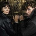 #OnTheBigScreen: Fantastic beasts, widows, and a sci-fi thriller