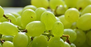 SA table grape estimate for 2018/2019 season