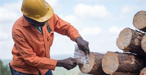 PEFC endorses sustainable forest management initiative for SA's rural farmers