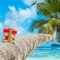 Should travel insurance be top of mind this festive?