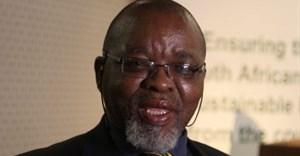 Mining Minister Gwede Mantashe