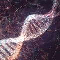 One test to diagnose them all: researchers exploit cancers' unique DNA signature