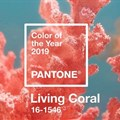Pantone colour of the year 2019: Living Coral