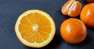 Why citrus pectin demand dominates in 2018