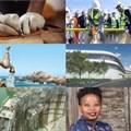 #BestofBiz 2018: Construction & Engineering