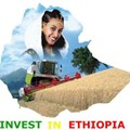 Digital platform to investing in Ethiopia launches