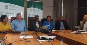 Foot-and-mouth disease task teams formed