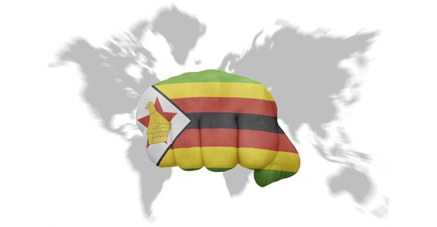 Global concern over Zimbabwe situation