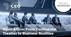 AfCFTA will facilitate the emergence of new Africa champions