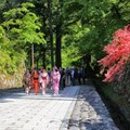 Go off the beaten track, explore a city of wonder with Walk Japan