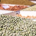 Global seed companies address climate change, nutrition needs