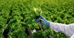International push to improve food safety
