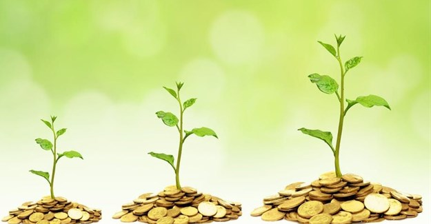 Impact investments focus on projects with social or environmental value. wk1003mike/Shutterstock