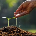 AFGRI commits R3m funding support to SA farmers