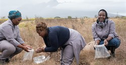 Woolworths, partners launch community learning farm in Stellenbosch