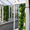 UJ to host inaugural African Conference on Vertical Farming and Urban Agriculture