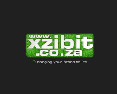 XZIBIT website launch