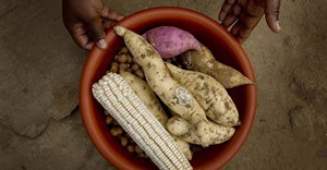 Commercialisation of small scale farmers is critical to Africa's transformation to a global breadbasket