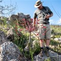 Gondwana Game Reserve launches new fynbos conservation experience