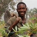 Smallholders benefitting from digitised agriculture