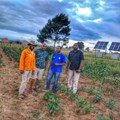 Researchers help Eastern Cape farm explore new opportunities to improve livelihoods