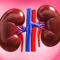 Drug reduces kidney failure in diabetics