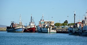 Business called to lead transformation in fishing industry