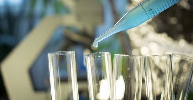 For developing countries in Africa immunotherapy solutions is important given the high cost of cancer drugs. Shutterstock