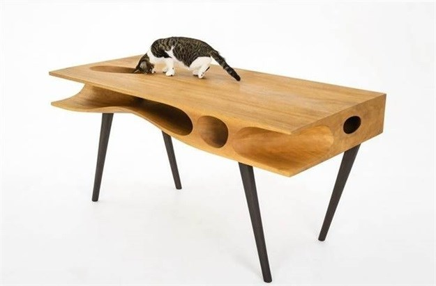 Cape Town Homemakers Expo launches pet design category