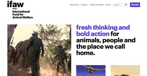Animal welfare and conservation organisation ifaw unveils rebrand