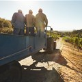 Threat of new strike at Robertson Winery