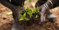 Econet, Yara launch Generation Africa, brings youth entrepreneurship to Africa