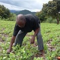 Farmer-to-farmer programme launches in Zimbabwe