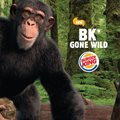 Burger King brings new kids campaign to life with augmented reality